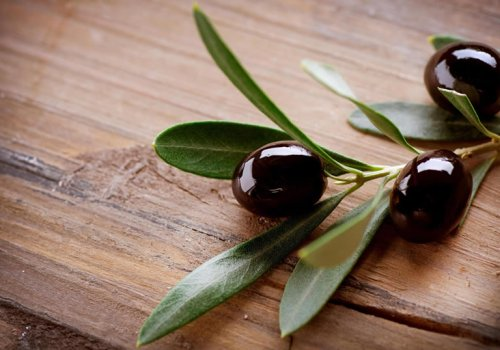Significant Olives' Facts
